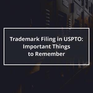 Trademark Filing in USPTO