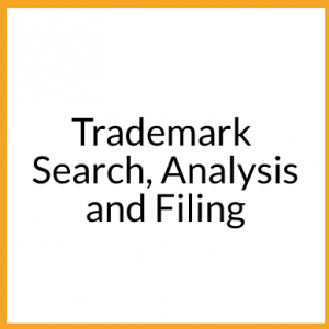 TM Search Analysis and Filing